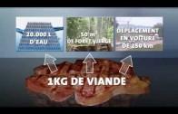 Documentaire sur la viande ! Clairement expliqué ce que c'est la viande.