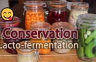 La lacto-fermentation, une méthode de conservation sans danger et peu énergivore.