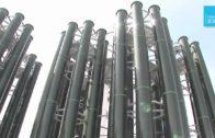 Le biopétrole à partir d'algue, une alternative sérieuse